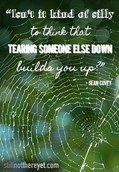 """""""Isn't it kind of silly to think that tearing someone else down builds you up?"""" - Sean Covey"""