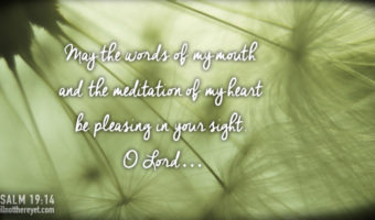 Psalm 19:14 (Photo courtesy of Mark Menzies via Flikr)