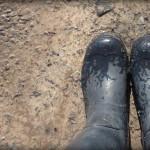 Muddy Transitions