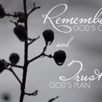 Remembering and trusting