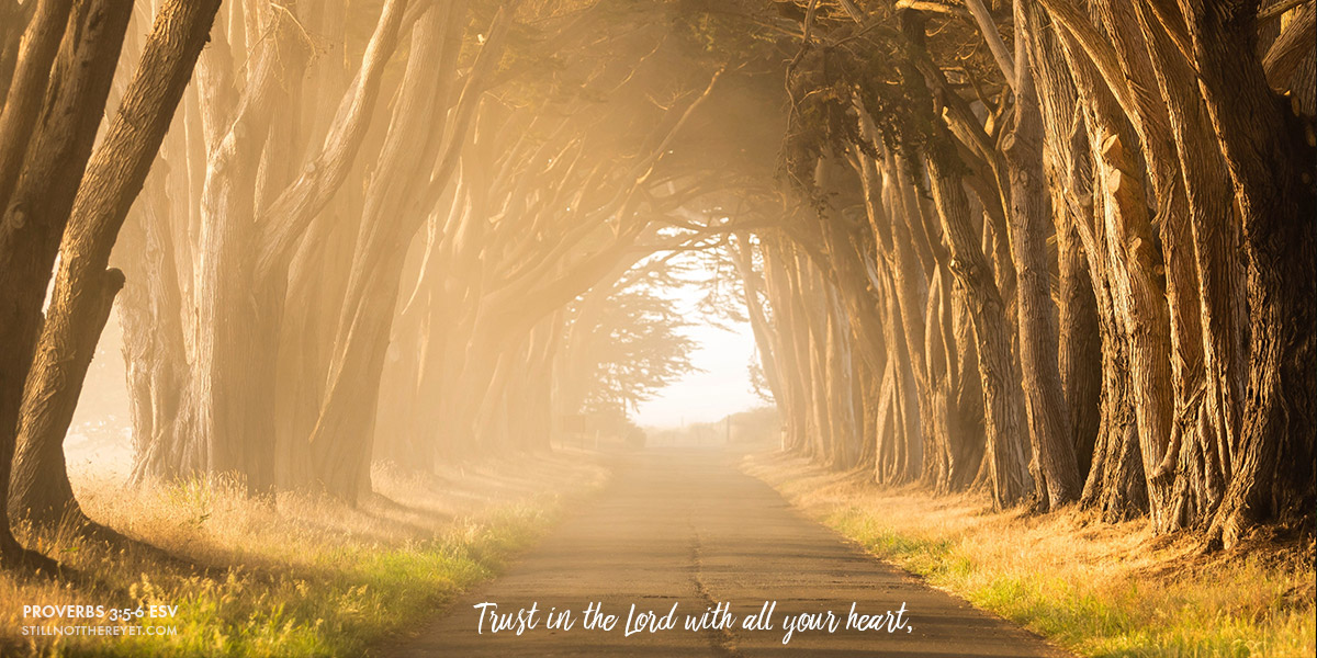 Trust in the Lord with all your heart,